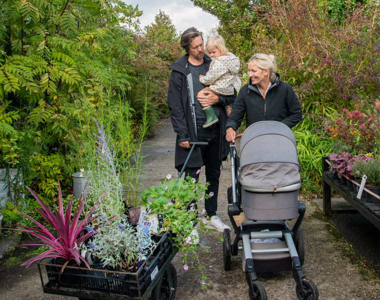 planten-kopen-met-gezin